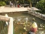 guanqi park dansa
