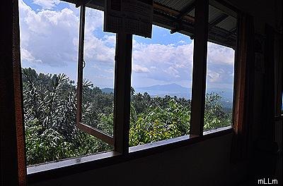Dari jendela rumah makan