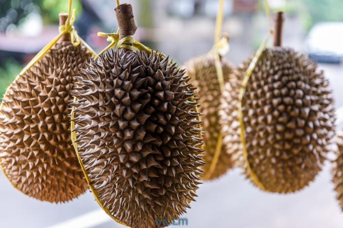 Durian menanti pembeli