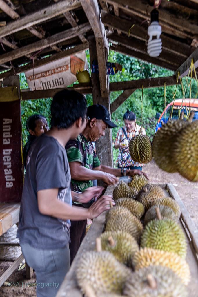 Pilih Durian