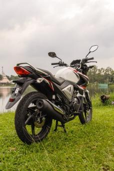 Honda NMP FI-1136